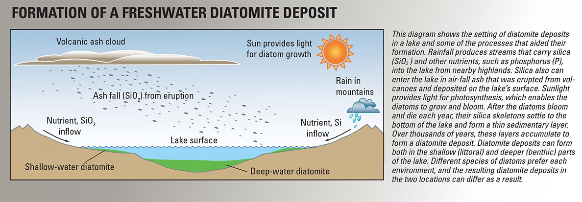 Formation of Freshwater Diatomaceous Earth